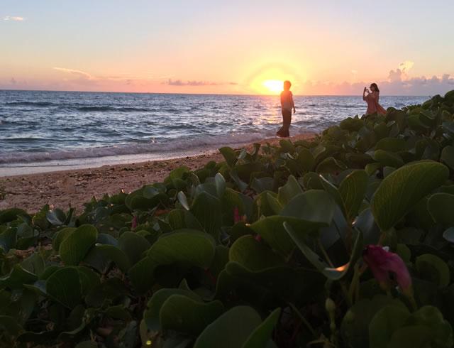 ファミリーレンタカー沖縄で旅がもっと楽しくなる